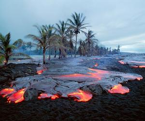 lava and trees image