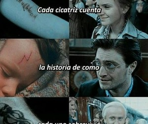 frases, harry potter, and hp image