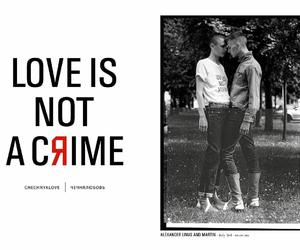 one love, love is not a crime, and love is the answer image