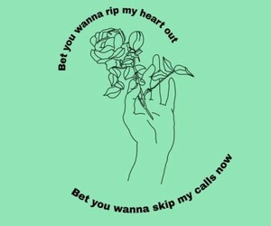 green, quote, and rose image