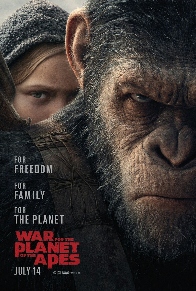 movies, filma, and war planet of the apes image