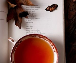 autumn, tea, and book image