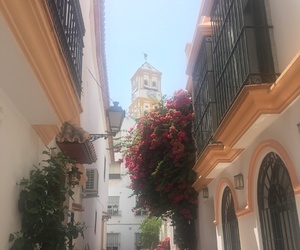 flowers, marbella, and spain image