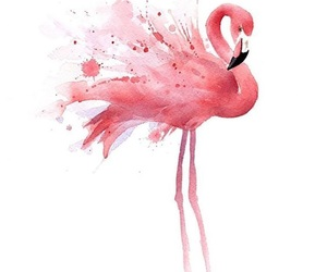 animal, flamingo, and paint image