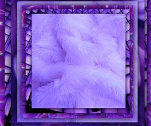 tumblr, viola, and wallpaper image