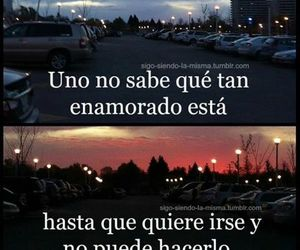 love, frases, and tumblr image