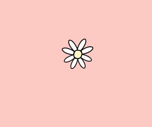 wallpaper, pink, and white image