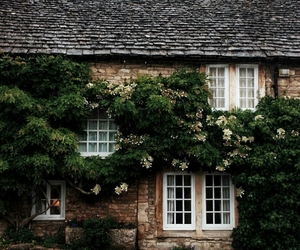 beautiful, exploring, and house image