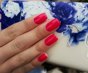 colors, red, and nails image