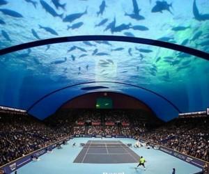 Dubai, tank, and tennis image