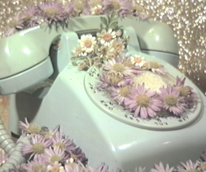 call me, flowers, and telephone image
