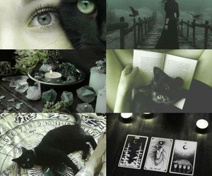 witch, cat, and book image