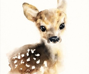 deer, fawn, and print image