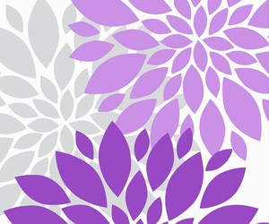 dahlia, dahlias, and grey image