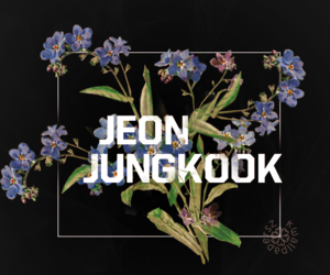 jungkook, bts, and wallpaper image