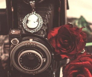 background, beautiful, and camera image