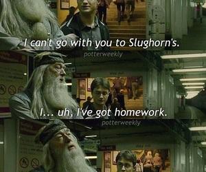 dumbledore, homework, and hp image