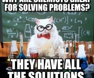cat, chemist, and chemistry image