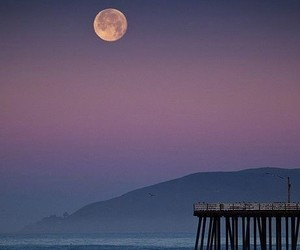 beach, moon, and photography image