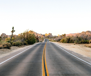 road, indie, and nature image