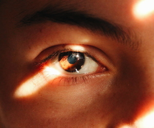 brown eyes, aesthetic, and photography image