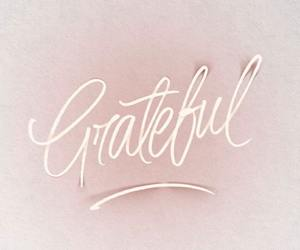 grateful, quotes, and pink image