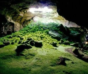 cave, green, and nature image