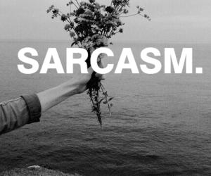 grunge, black, and sarcasm image