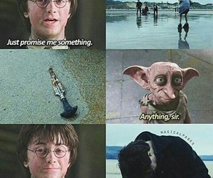 harry potter, dobby, and potter image