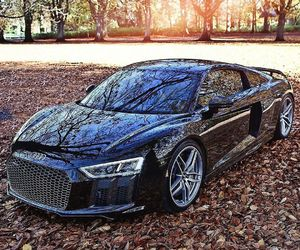 audi, r8, and blackcolor image