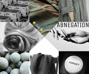 divergent, aesthetic, and abnegation image