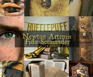 gryffindor, harrypotter, and hermione granger image