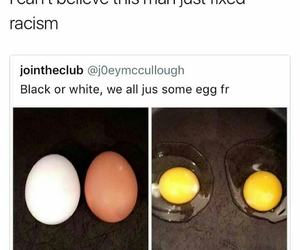 eggs, funny, and tweet image