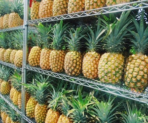 background, travel, and pineapples image