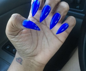 blue, bright, and claws image