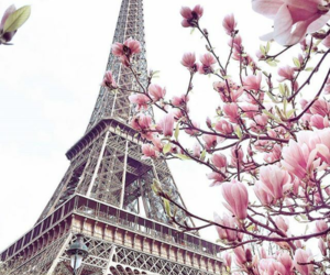 francia, pink, and parís image