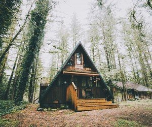 cabin, flowers, and forests image