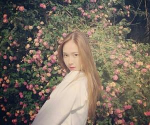 girl, jung soo yeon, and sicachu image