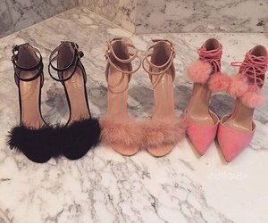 shoes and fur image