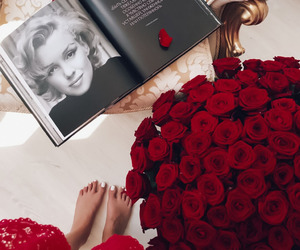 flowers, luxury, and roses image