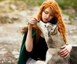wolf, girl, and stark image