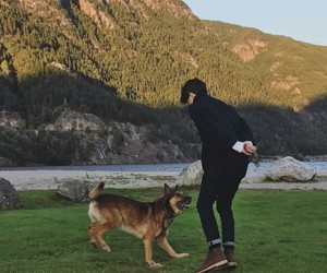 dog, brad, and the vamps image