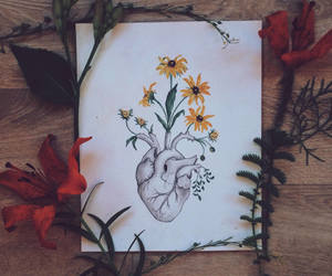 anatomy, etsy, and flowers image