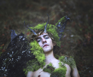 forrest, horns, and woods image