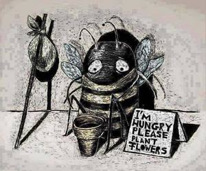 bee and flowers image