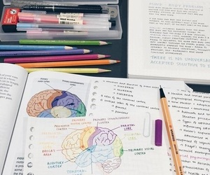 study, school, and medicine image