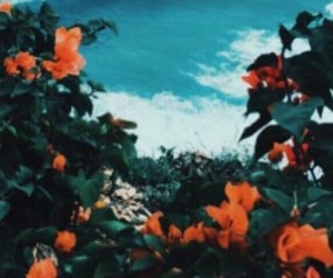 header, flowers, and rose image