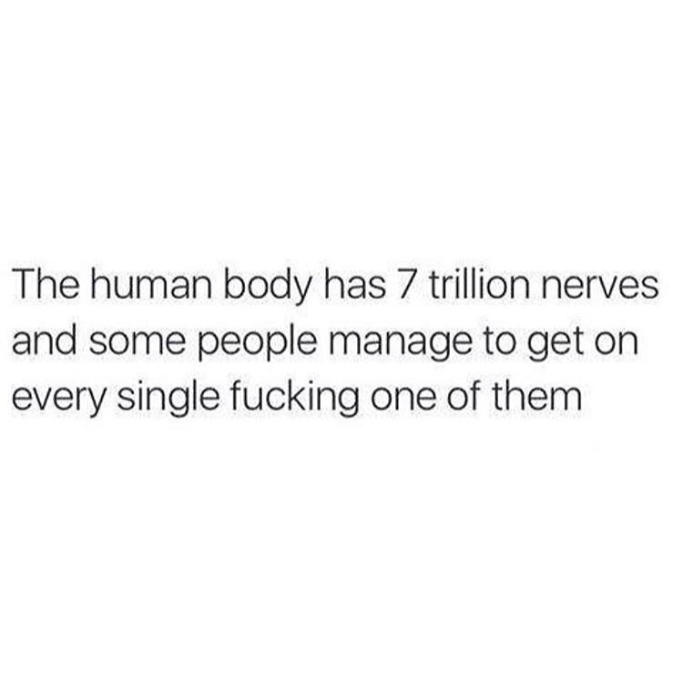 nerve, human, and trillion image