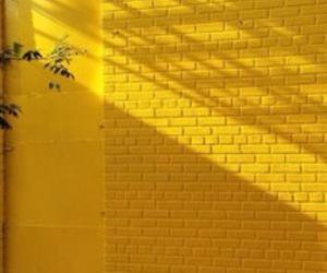 yellow, aesthetic, and wall image