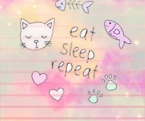 background, cat, and girly image